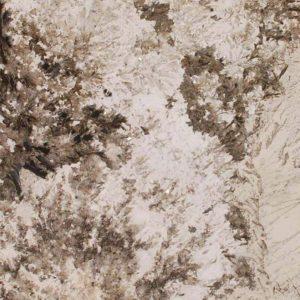 alpine white granite 300x300 - BLUE BAHIA GRANITE