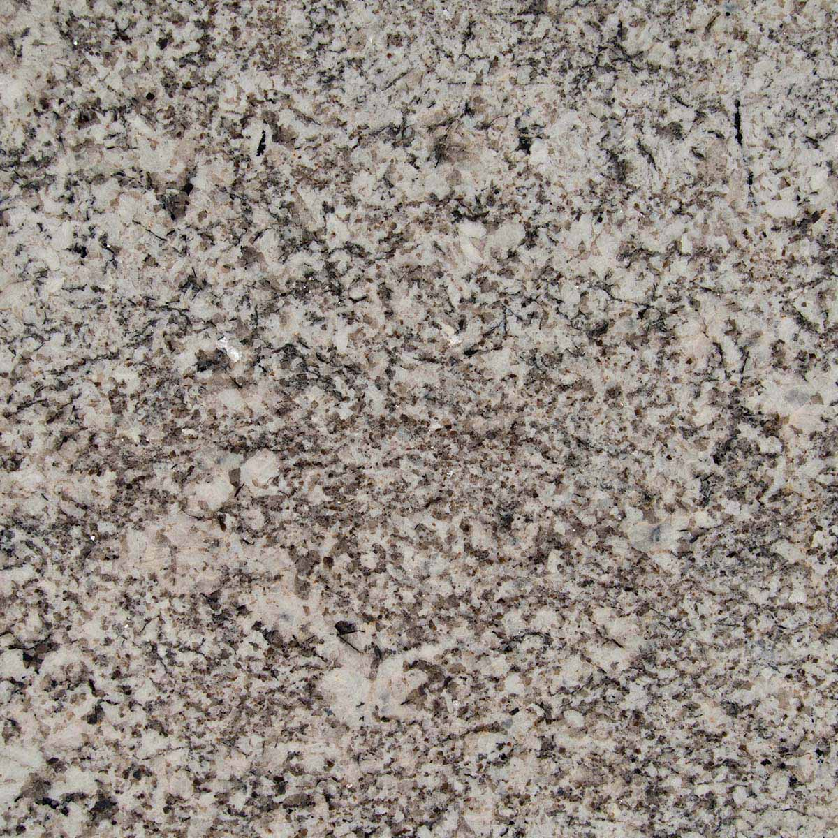 Oyster White Granite Slab: Cabinets & Countertops Milwaukee